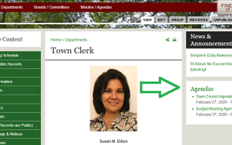 screen shot of Town Clerk page